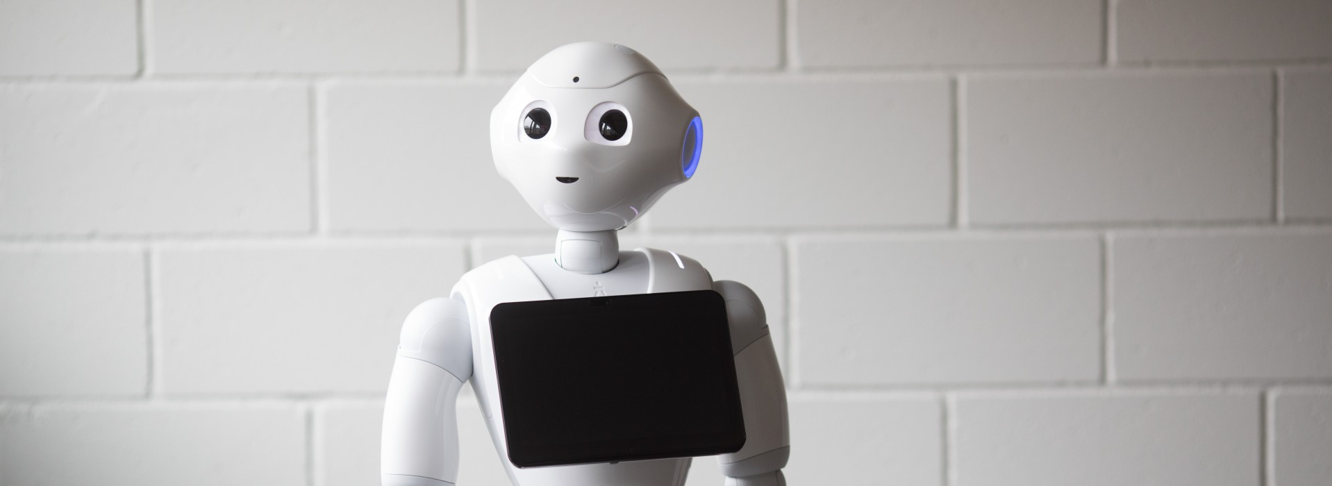 Pepper_Humanoid Robot by Hansab